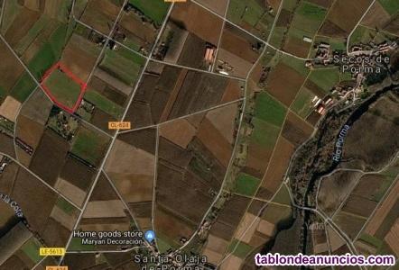 Venta parcela 40.000 m2 Ctra Puente Villarente-Boñar, km 7 Santa Olaja de Porma
