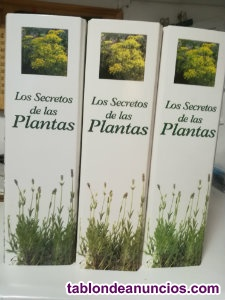 Los secretod de las plantas
