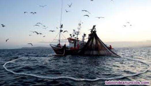 Temario actualizado Inspección pesquera