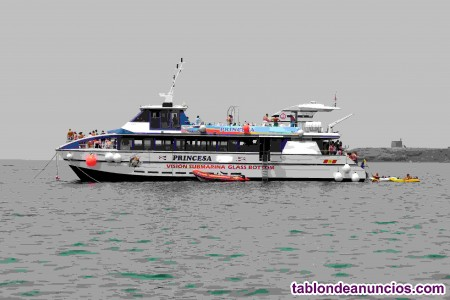 Catamaran ico (transporte pasaje de crucero)