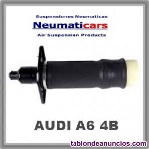 Suspension neumatica Audi