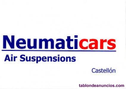 Amortiguador Suspension Neumatica