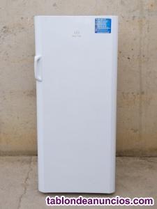 Congelador vertical INDESIT 145cm
