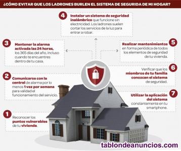 Sistemas de seguridad (vivienda y/o negocio)