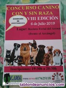 Concurso canino de perros con y sin raza y exhibicion de adiestramiemto(viii edi