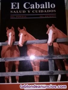 El caballo salud  y cuidados