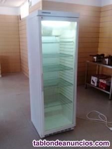 Escarchacopas, nevera, puerta de cristal