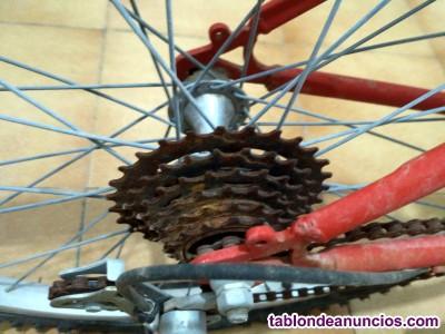 Bicicleta niño-juvenil