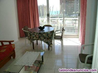 Alquila apartamento en 2ª linea playa levante-benidorm
