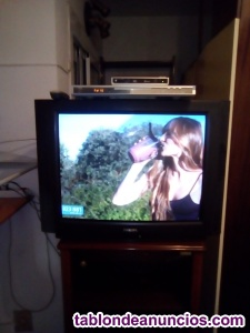 Tv de tubo philips + tdt + lector dvd-divx