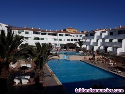 Compro en el sur  de Tenerife apartamento 99.500 euros de particular