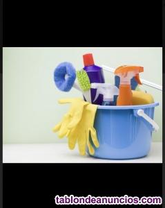 Limpieza de locales, pisos, oficinas, etc