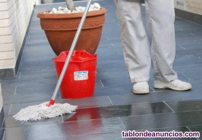 Limpieza de zonas comunes (discapacidad)
