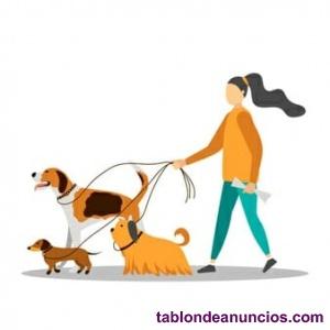 Cuidarores de perros.