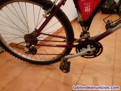 Bicicleta zeus 200