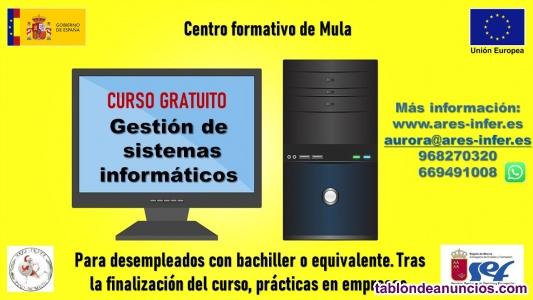 Curso gratuito de gestión de sistemas informáticos