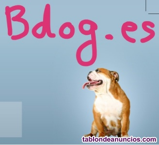 Adiestrador canino Madrid. Educación natural canina.