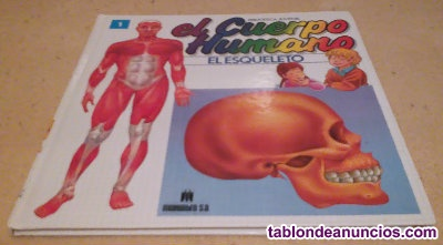 El cuerpo humano - Nº1 El esqueleto