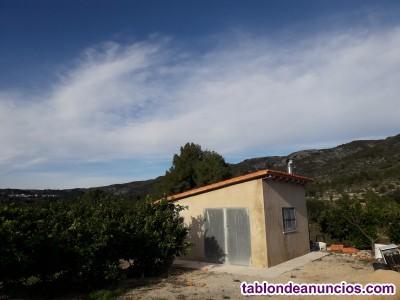 Campo de Naranjos con caseta
