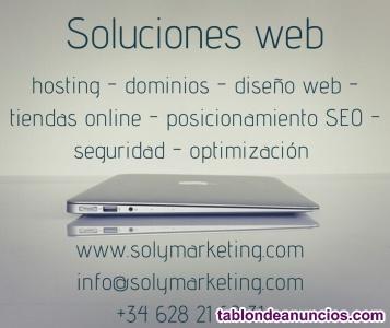 Somos profesionales del diseño web