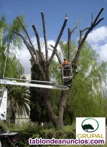 Trabajos forestales y jardinería