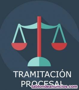 ESQUEMAS DE TRAMITACION PROCESAL.