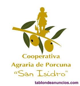 Representante comercial venta aceite de oliva extra envasado