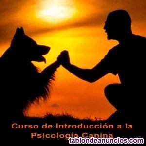 Introducción a la Psicología Canina GRATUITO