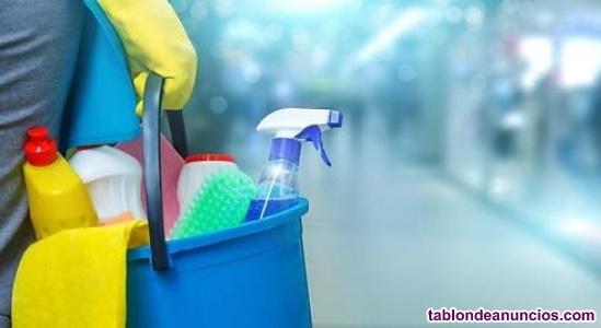 Hago limpiezas domesticas y de portal