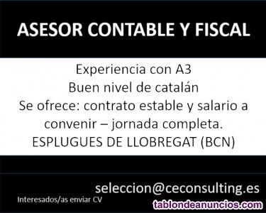 Asesor contable - fiscal con a3