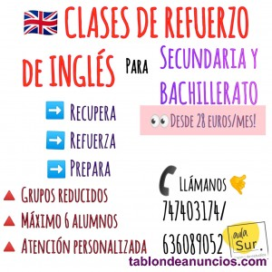 CLASES PARTICULARES ONLINE SKYPE