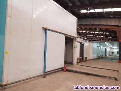 Venta Obrador desmontado por cierre;Cámaras,secadero,salas,panel,puertas,equipos