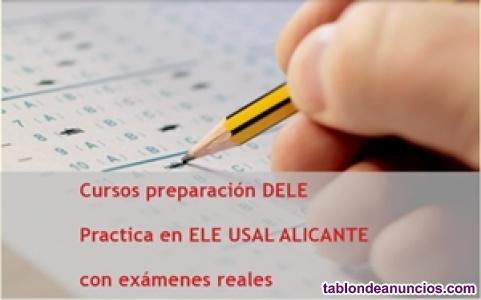 Preparación DELE A2 on line