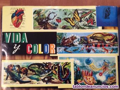 Colección Cromos Vida y Color