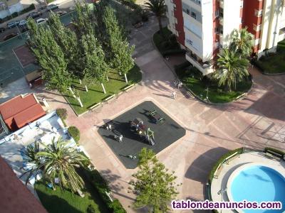 Alquiler apartamento complejo Ambassador