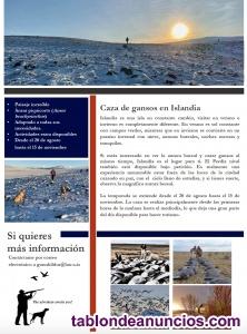 Pesca de salmón y/o caza de gansos en Islandia