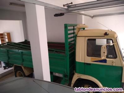Camion de transporte