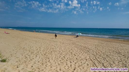 Alquiler apartamento en Oliva(Valencia), sector nuevo playa Burguera.