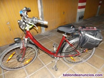 Bicicleta Holandesa Como Nueva