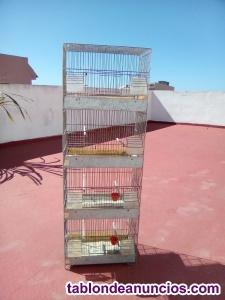 Venta de jaulas para pájaros