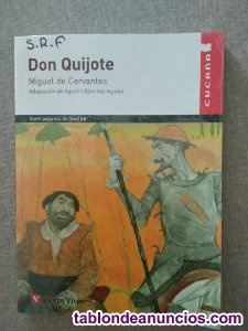 Don quijote - vicens vives
