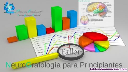 Clases de NeuroGrafología - Nivel Inicial-