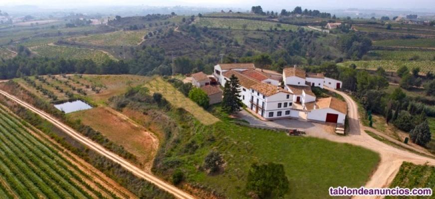 Visita a bodega con degustación y cata de vinos