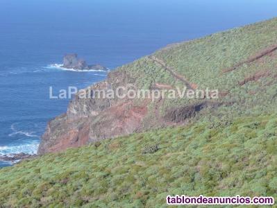 ID-424  Gran terreno en la zona noroeste de la isla de la Palma, en Lomada Grand