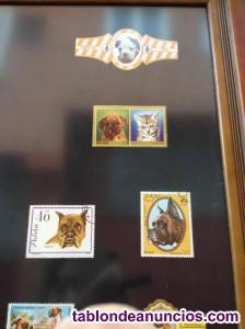 Cuadro temático, lámina de perro bóxer con sellos y vitolas