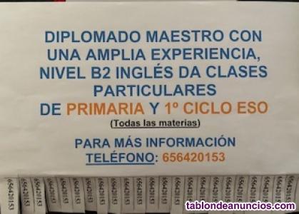 Profesor clases particulares Primaria y 1º ciclo ESO