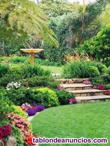 Se ofrece jardinero zona Boadilla