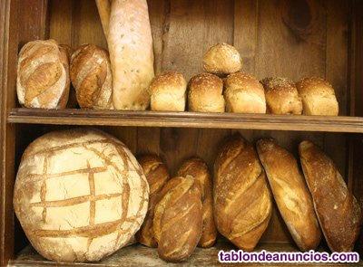 Traspaso panaderia pasteleria cafeteria de referencia