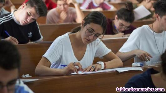 ¿Quieres aprobar selectividad y buscas una profesora con experiencia?