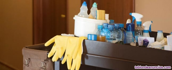 Encargado mantenimiento de 2 viviendas en valencia